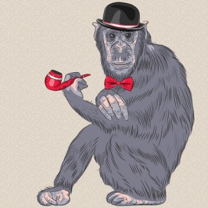 Not all SEO services have evolved like this monkey